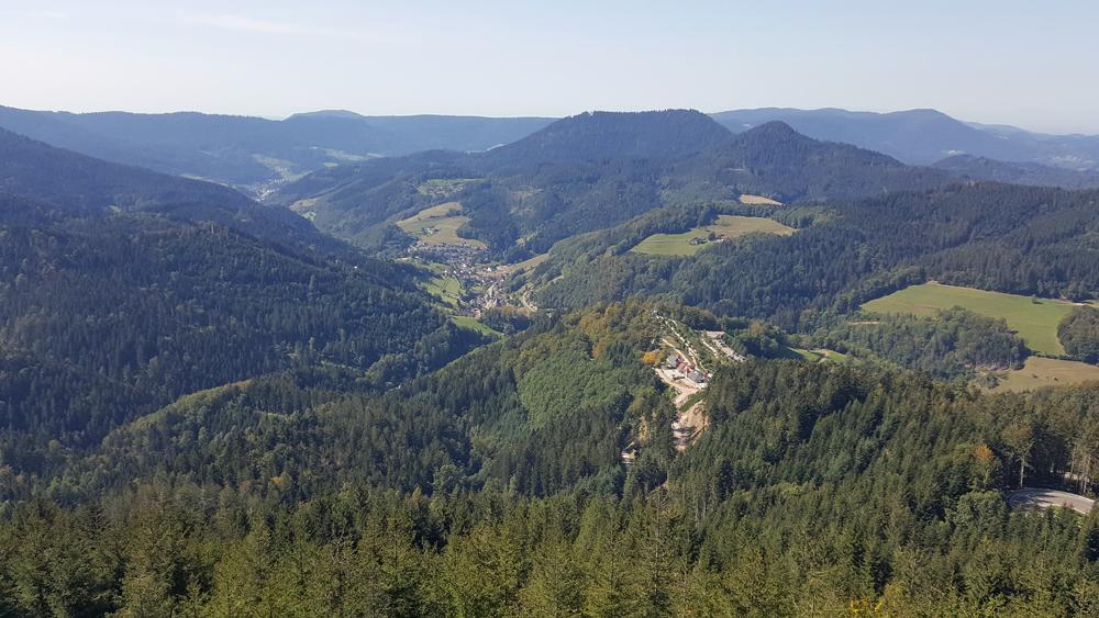 Westweg Etappe 5 Alexanderschanze Unterstmatt 2020 Lukas Ehmann